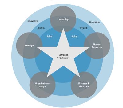 dotag-blog-inhalt-psychologische-Sicherheit-LernendeOrganisation